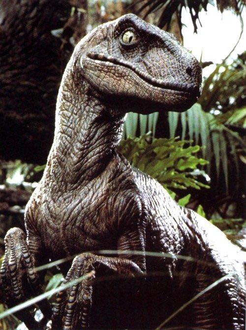velociraptorjurassicpark