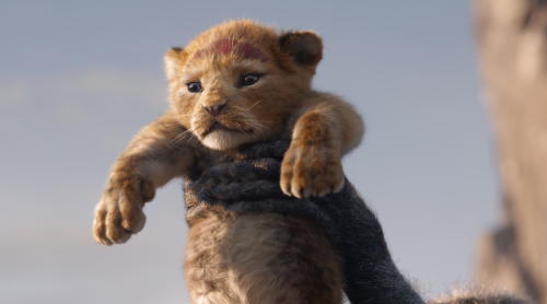 The-Lion-King-2019-Afbeelding-3-1