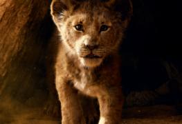 The Lion King (2019) - Uitgelichte Afbeelding